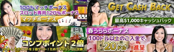 ワイルドジャングルカジノキャンペーン画像